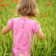 Little girl in  poppy field — Stock Photo