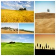 Toscane landschap collage — Stockfoto