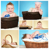 Adorable baby boy collage — Stock Photo