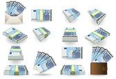 Full set of twenty euros banknotes — Stock Vector