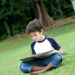 Young boy enjoying his reading book in outdoor park — Stock Photo #11969280
