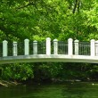 The white bridge through the small river - Stock Photo
