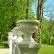 White columns with vases - Stock Photo