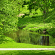 The small river in park - Stock Photo