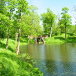 Pond in park - Stock Photo