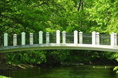 The white bridge through the small river — Stock Photo