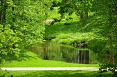 The small river in park — Stock Photo