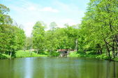 Sunny day in park at a pond — Stock Photo