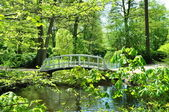 Small white bridge in park — Stock Photo