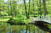 Small white bridges in park — Stock Photo