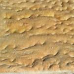 Italian bread with grains of salt homemade sourdough — Stock Photo #11095997