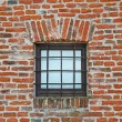 Brick wall with iron lattice window of an ancient prison — Stock Photo #11133318