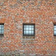 Brick wall with iron lattice window of an ancient prison — Stock Photo #11133341