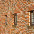 Red brick wall with iron lattice window of an farm — Stock Photo #11133397