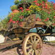 Old wooden cart with pots of Geraniums flowers — Stock Photo