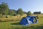 Blue tent campsites planted amidst the mountain meadow Green — Stock Photo