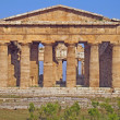 Splendid ancient Greek columns of the temple very well preserved — Stock Photo