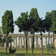 Ancient Greek temples and trees in southern Italy - Zdjęcie stockowe