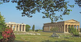 Ancient Greek temple for the worship of the gods — ストック写真