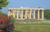 Greek temple for the worship of the gods in southern Italy — Stock Photo
