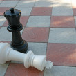 Stock Photo: White King in checkmate from Black Queen