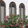 Three Windows on the White House with oleanders — Stock Photo