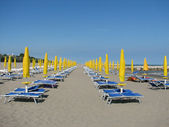 Series of Yellow Sun umbrellas and loungers and deckchairs on t — Stock Photo