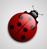 Ladybug icon — Stock Vector