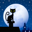 Black cat and moon — Stock Vector