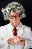 Funny Professor and Brain — Stock fotografie