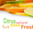 Citrus sliced fruit - Stock Photo