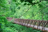 Oude brug in bos — Stockfoto