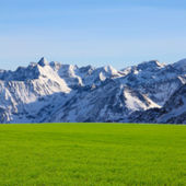 Green field and high mountains — Stock Photo