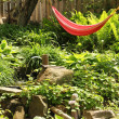 Red hammock — Stock Photo