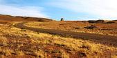 Gün batımında yol — Stok fotoğraf