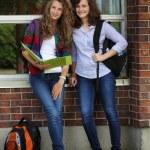 Happy students — Stock Photo #11713403