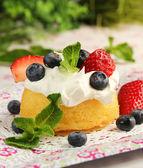 Meyveli tatlı — Stok fotoğraf
