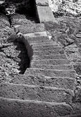 Stairs Going Down To Water — Stock Photo