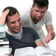 Two young men studying together — Stockfoto #12036890