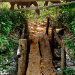 Wooden rustic bridge — Stock Photo