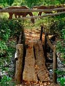 Rustikale holzbrücke — Stockfoto