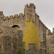 Castle of the Counts Gent  Belgium Flanders — Stock Photo