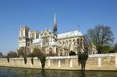 Notre-Dame de Paris and the Seine — Stock Photo