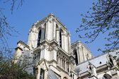 Notre Dame of Paris — Stok fotoğraf