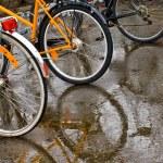 ciclismo — Foto Stock