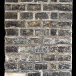 Vintage brick wall — Stock Photo #11154116