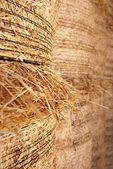 Baled hay — Stock Photo