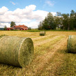 Rural landscape with hay bales — Stock Photo