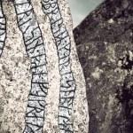 Rune stone — Stock Photo