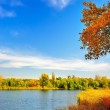 Autumn landscape at the lake — Stock Photo #11417797
